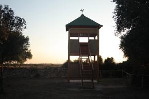 Torre osservatorio (3)